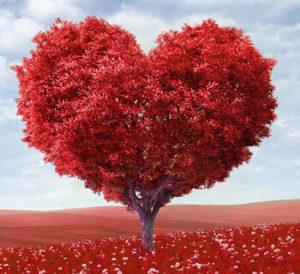 Valentines-Daycr