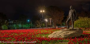WarMemPoppies_09102018-8067-4
